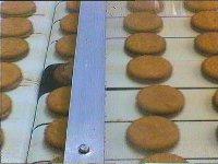 biscuit 200x150